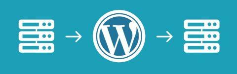 wordpress honlap költöztetés - kuti.hu